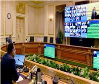 الحكومة توافق على تجديد تعاقد محافظة الجيزة مع شركات خدمات النظافة