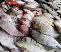 حقيقة استيراد أسماك غير صالحة للاستهلاك وطرحها بالأسواق