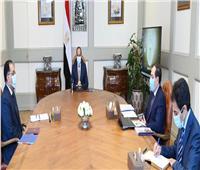 الرئيس السيسي يوجه بصياغة رؤية إستراتيجية شاملة لتطوير قطاع التعدين في مصر
