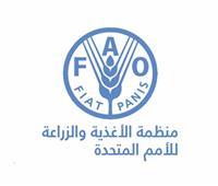 """الممثل القطري لـ""""الفاو"""": 2% نسبة النمو في الاقتصاد المصري رغم جائحة كورونا"""