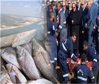 «الثروة السمكية» 1.9 مليون طن حجم إنتاج مصر من الأسماك سنويا