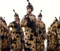 النواب الليبي: يحق للقوات المسلحة المصرية التدخل لحماية الأمن القومي