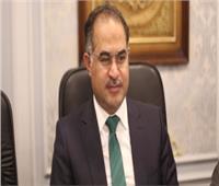 وكيل النواب: قرار البرلمان الليبي تاريخي ومصر لن تتخلى عن هذا البلد