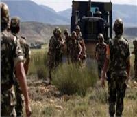 القضاء على إرهابيين اثنين جنوب الجزائر