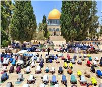 صور| الآلاف يؤدون صلاة الجمعة من المسجد الأقصى اليوم