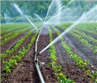 البنك الزراعي يسهم في تمويل تطبيق أنظمة الري الحديث