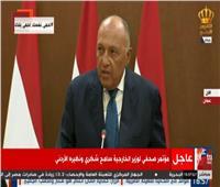 سامح شكري: ما يجري في ليبيا يشكل تهديدا جسيما للأمن القومي العربي والمصري