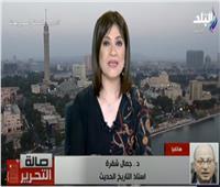 شقرة: الاصطفاف الوطني سر انفراج أزمات مصر على مدار التاريخ.. فيديو