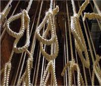 تنفيذ حكم الإعدام في 7 متهمين بقتل ضابط بالإسماعيلية وسرقة سلاحه