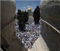 «الرباط بالأقصى».. دعوات فلسطينية بعد اقتحام مستوطنين إسرائيليين للمسجد