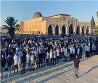 فيديو  أداء صلاة عيد الأضحى بالمسجد الأقصى.. وأجواء الفرح تعقبها