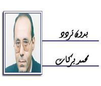 الصورة العربية