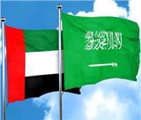 الإمارات والسعودية تبحثان العلاقات الثنائية