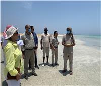 وزيرة البيئة: هدفنا إدارة المحميات بأسلوب عالمي