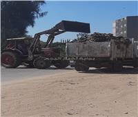 رفع مخلفات ذبح الأضاحي بمدينة وقرى مركز المحلة