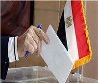 انتخابات الشيوخ| كل ما تريد معرفته عن تصويت المصريين بالخارج