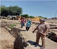 رفع ٣٠ طن قمامة من المنطقة الأثرية ببسيون