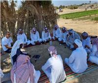 """""""انتخابات الشيوخ"""" بجنوب سيناء.. """"تربيطات"""" مع القبائل ودعاية بمواقع التواصل الاجتماعي"""