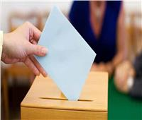 «إنزلي وشاركي».. «أنتي الأهم» تحث السيدات على التصويت بالانتخابات.. فيديو