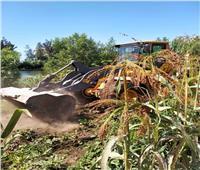 إزالة 34 حالة تعد علىأملاك الدولة في البحيرة