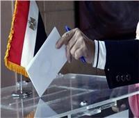 الجاليات المصرية بأوروبا: اجتماعات عبر الفيديوكونفرانس لمتابعة «تصويت الشيوخ»