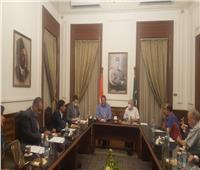 خارجية الوفد: رصدنا حرص المصريين بالخارج على المشاركة في انتخابات «الشيوخ»