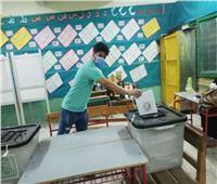 صور| ظهور لافت للشباب باللجان الانتخابية قبل غلق صناديق الاقتراع