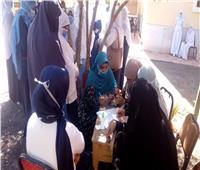 القومى للمرأة يتابع سير العملية الانتخابية ويؤكد التزام السيدات