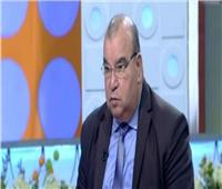 رفعت فياض: الانتخابات تجرى على أعلى مستوى من حرية الرأي بعد 30 يونيو