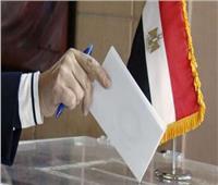 رئيس محكمة الأقصر الابتدائية: الفرز داخل اللجان عقب الانتهاء من الانتخابات
