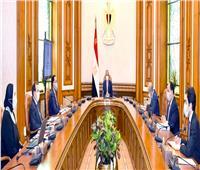 الرئيس السيسي يوجه الحكومة بتوفير مناخ داعم لقطاع الصناعات الثقيلة