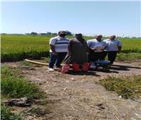 البيئة: معاينة واعتماد وفتح مواقع تجميع قش الأرز وتأجير معدات بوسط الدلتا