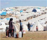 الهجرة العراقية: غلق مخيمات النازحين مرهون بتوفر الامكانيات