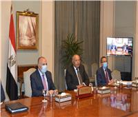 وزيرا الخارجية والري يشاركان في اجتماع دعت إليه جنوب أفريقيا لبحث تطورات سد النهضة