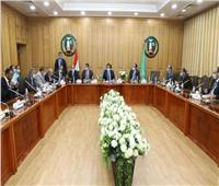 محافظ المنوفية: الاستثمار أحد الركائز الأساسية للنمو الاقتصادي للدولة المصرية