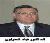 «المصرية اللبنانية» تبحث الاستفادة من صندوق مصر السيادي في الاستثمارات