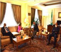"""""""أبو الغيط"""" يبحث مع ستيفاني وليامز سبل دفع جهود تسوية الأزمة الليبية"""