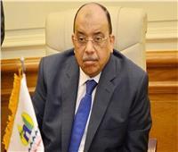وزير التنمية المحلية يتلقى تقريرا حول جهود الموجة 16 لإزالة التعديات