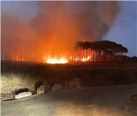 حريق هائل يلتهم الأشجار في لبنان وخوف من وصوله إلى المناطق السكنية