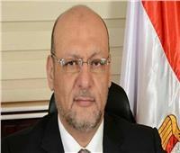 """رئيس حزب """"المصريين"""": السيسي أعاد دور مصر الرائد في إفريقيا"""