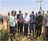 بالصور ..وزير قطاع الأعمال يتفقد تجربة زراعة القطن قصير التيلة بشرق العوينات