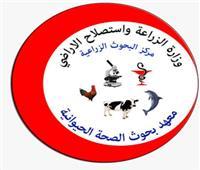 الزراعة: معهد صحة الحيوان ينظم دورات لتأهيل الخريجين لسوق العمل بـ12 محافظة