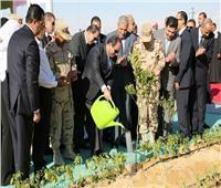 فيديو| خريطة زراعية جديدة لمصر في عهد الرئيس السيسي