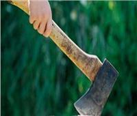 المؤبد لمزارع ضرب جارة بالفأس لخلافات بينهما بالشرقية