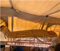 «السياحة»: اكتشاف بئر جديد يضم 14 تابوتًا في سقارة