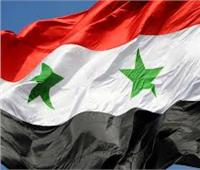 نرصد زيادة عدد الشركات السورية في مصر وأماكن تواجدها في عهد السيسي