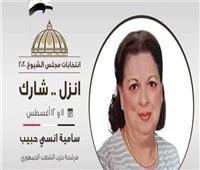 عضو بـ«الشيوخ»: قضايا المواطن على رأس الأولويات