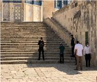 32 مستوطنًا يقتحمون المسجد الأقصى.. وقوات الاحتلال تغلق باب المغاربة