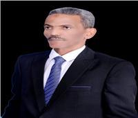 عضو الشيوخ نجاح مشروعات السورين في مصر دليل على أمنها وكرمها