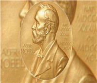 تعرف على نسبة زيادة «جائزة نوبل» هذا العام